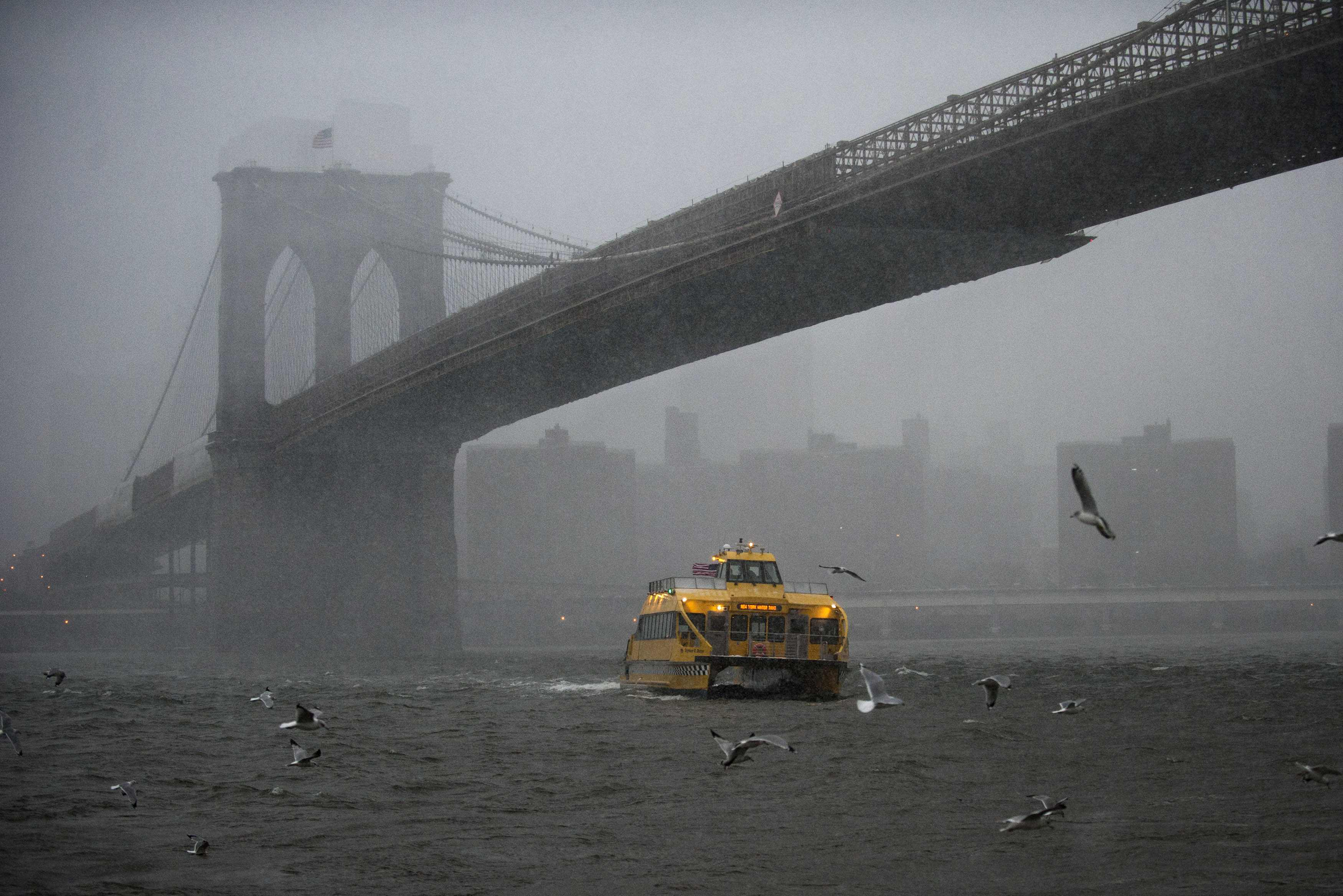 Winter Storm Nemo Blizzard Warnings And Flight Cancellations In Effect For New York New Jersey