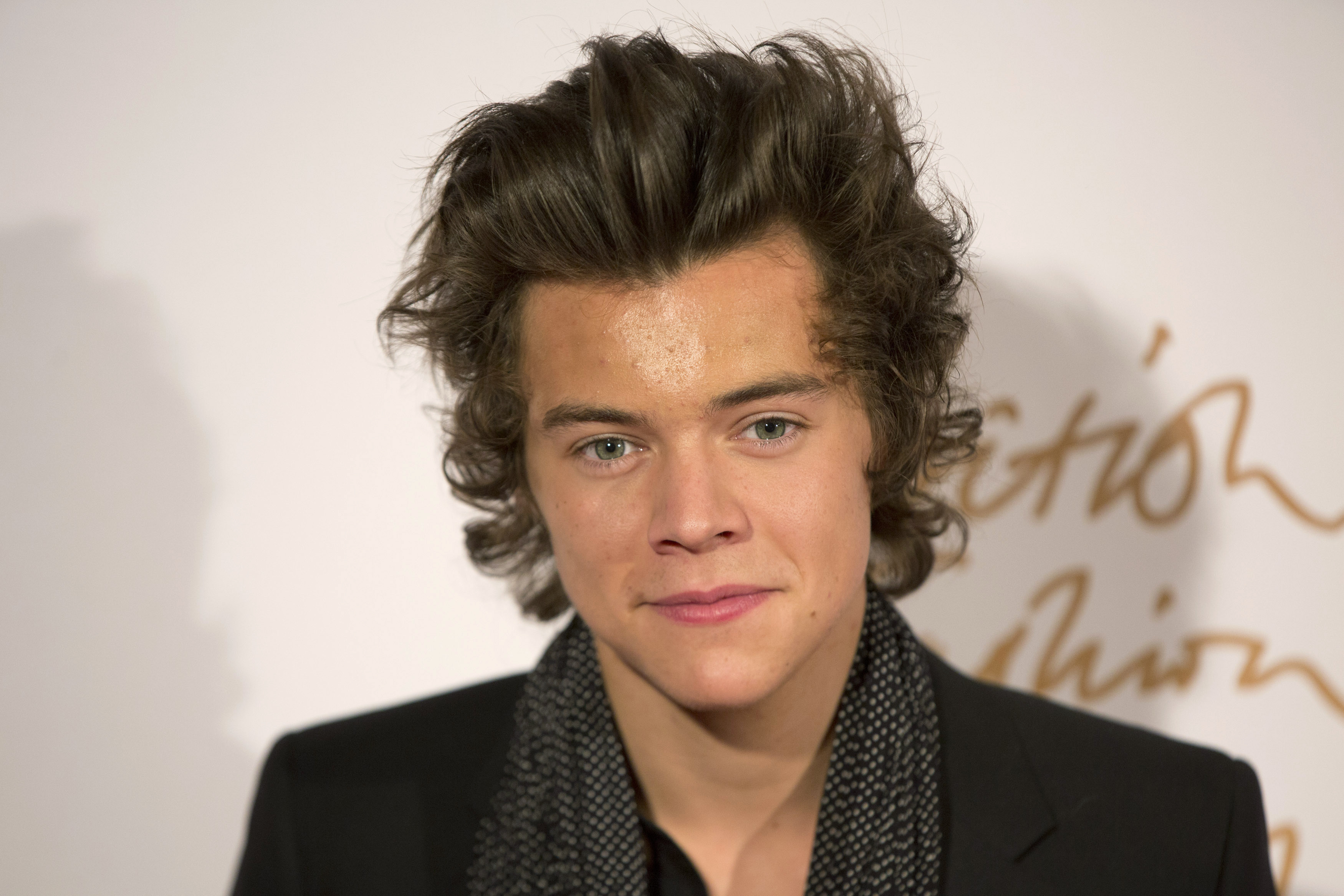 Everything About Harry From One Direction Harry Styles