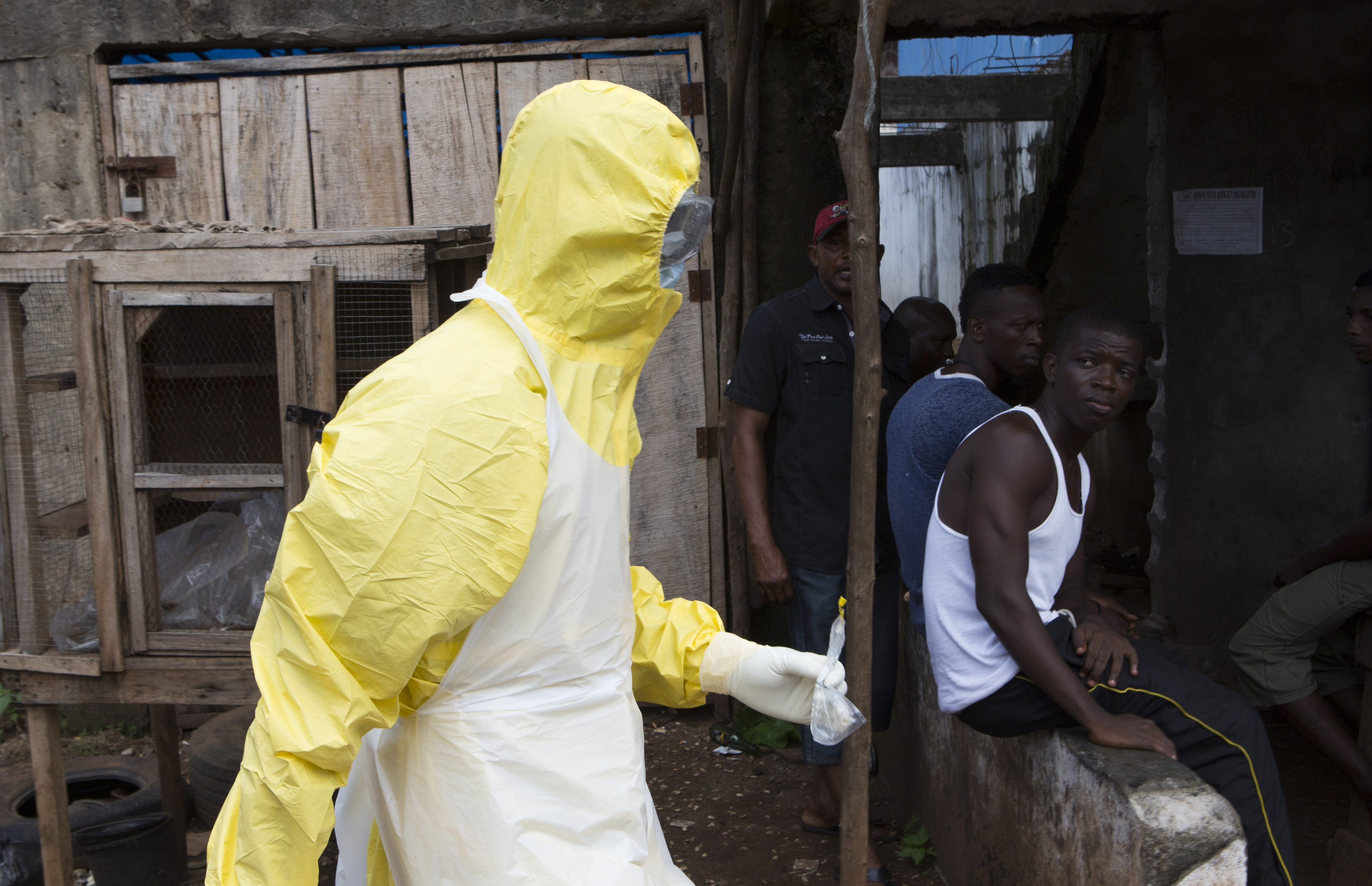 an introduction to the issue of the ebola virus in the world