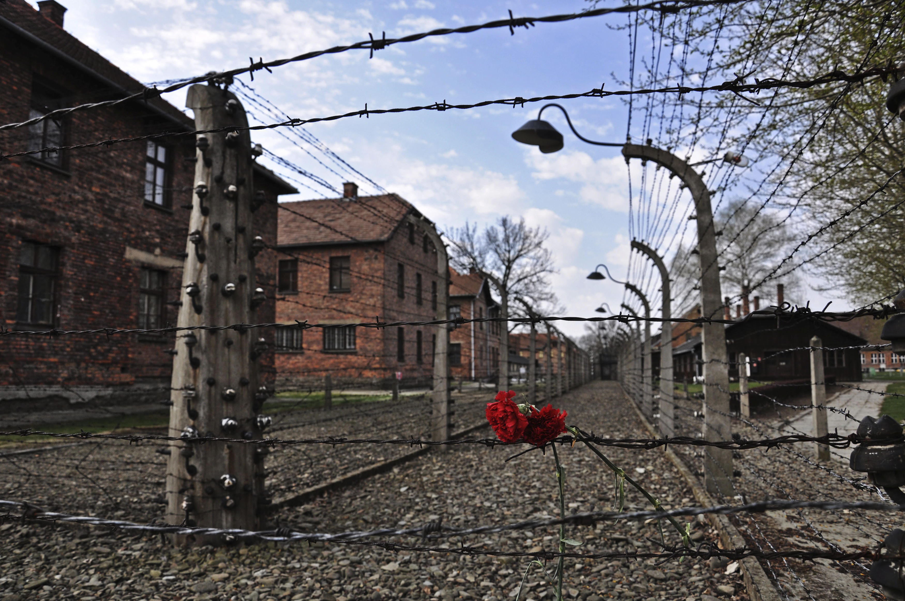 Holocaust survivor stories in 2015 in poland the fight to get their