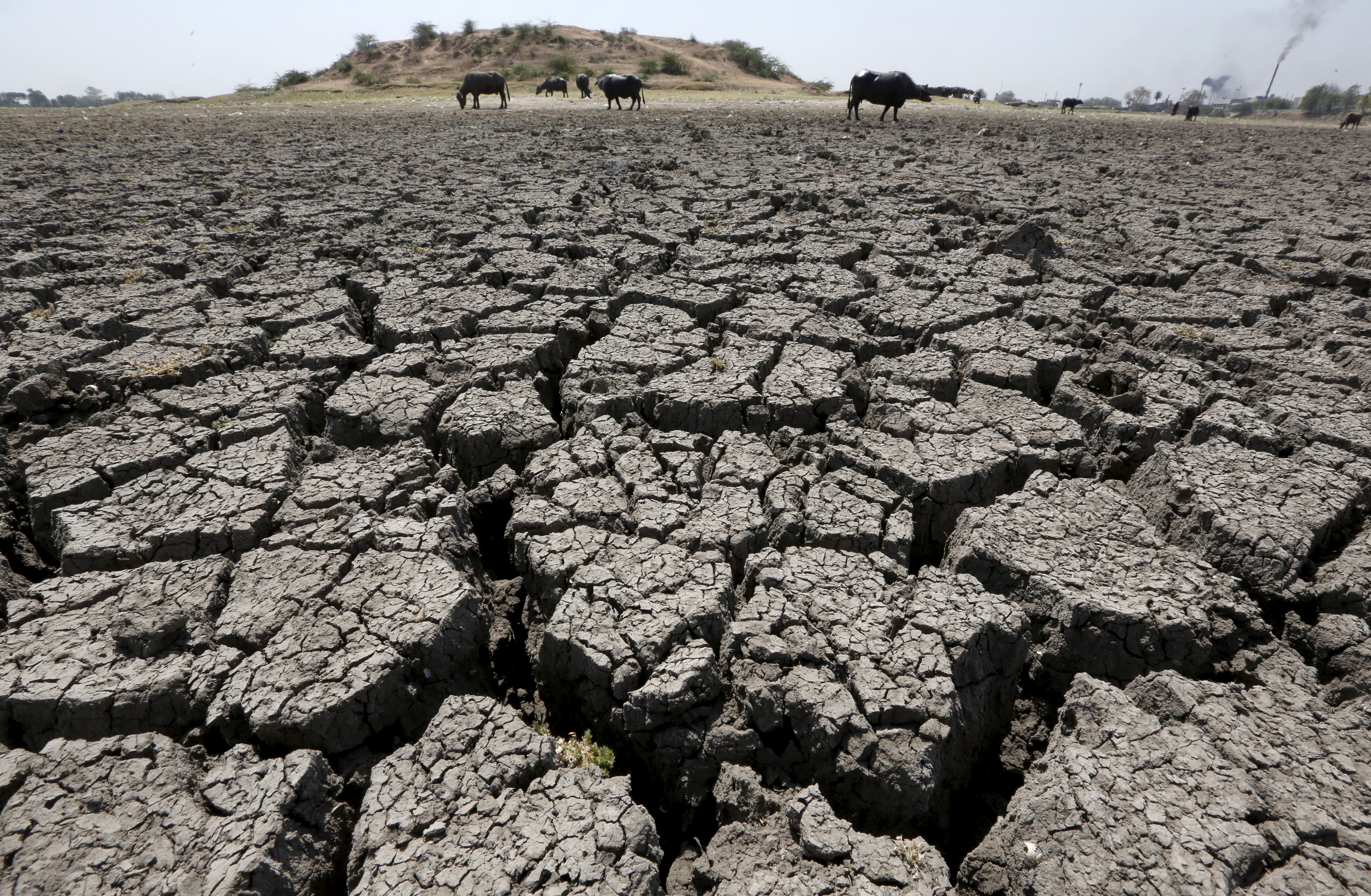 Natural Disasters Drought In India