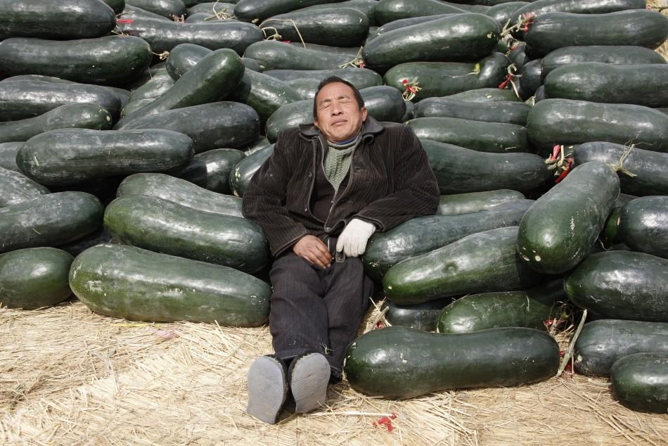 A vendor selling Chinese watermelons takes a nap at a wholesale market in Huaibei