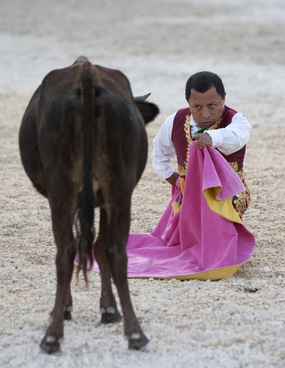Dwarf bullfighter Osvaldo Hernandez from Los Enanitos Toreros challenges a calf in Cancun