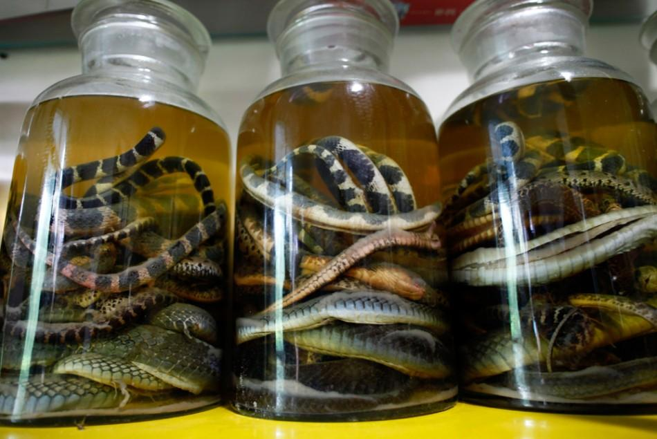 Dead snakes are preserved in jars at a snake farm in Zisiqiao village