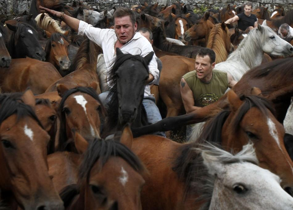 "Revellers try to hold on to a wild horse during the ""Rapa Das Bestas"" event in the village of Sabucedo"