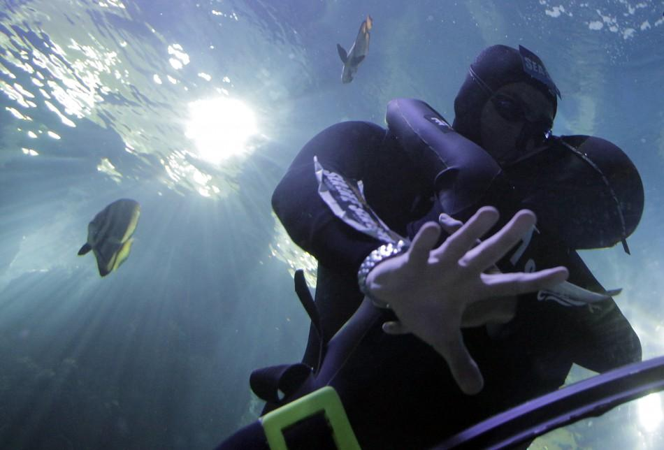 Free divers Maric and Bonin kiss in an attempt to set the world record for the longest underwater kiss, in an oceanic tank at the Gardaland Sea Life Aquarium in Castelnuovo del Garda