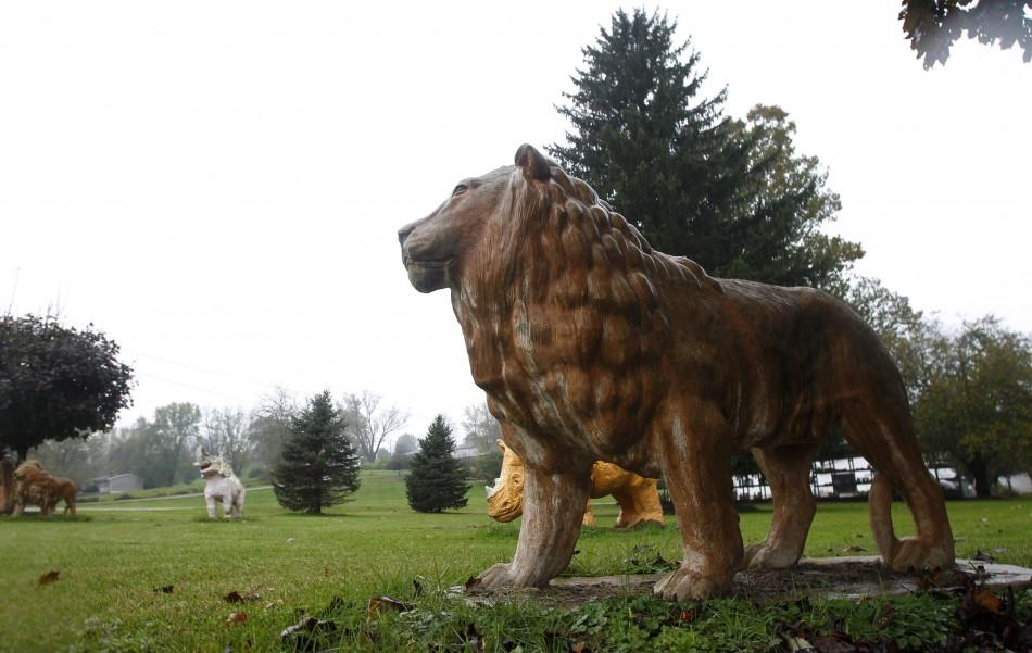 A statue of a lion sits in a yard near a property from where exotic animals escaped in Zanesville, Ohio
