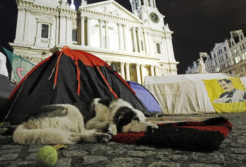 A dog lies in front of one of the tents of anti-capitalist demonstrators still camped outside St Paul's Cathedral in London