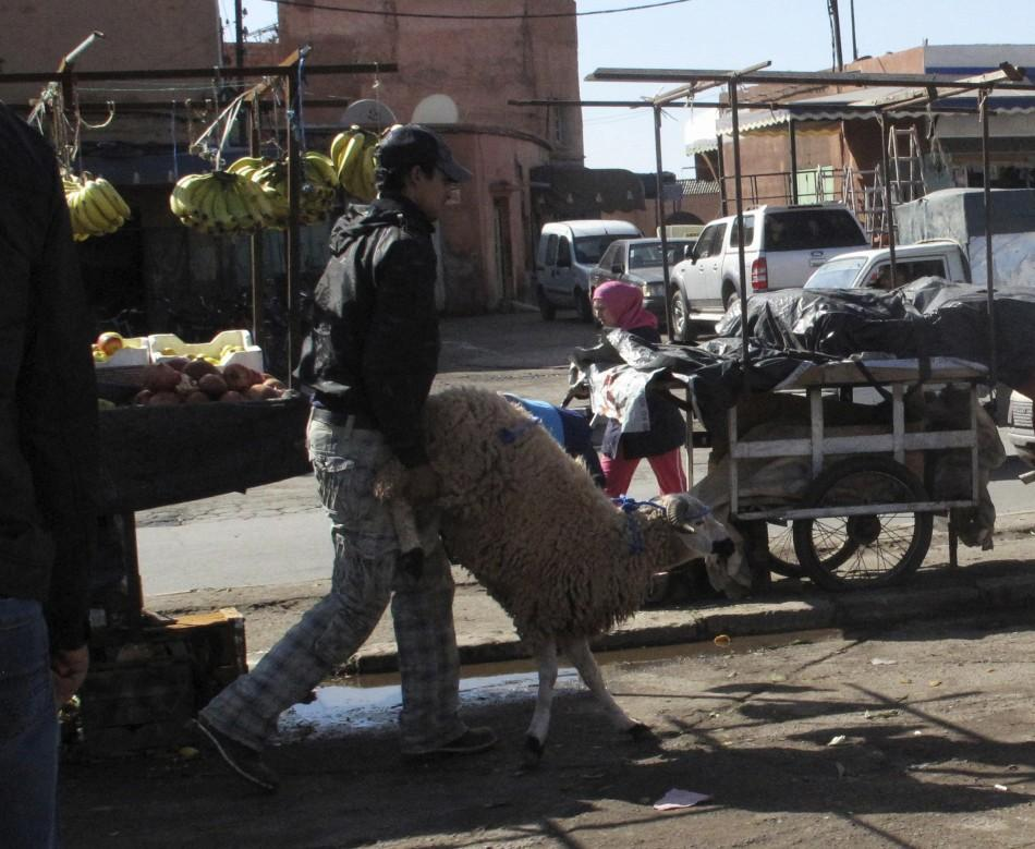 A Moroccan buys a sheep in preparation of Eid al-Adha in Marrakech November 6, 2011.