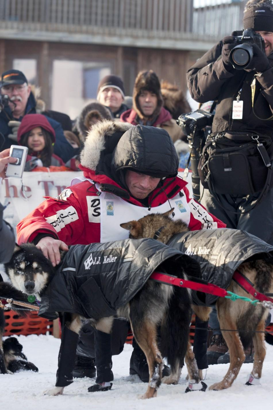Musher Seavey pets dogs at the 40th annual Iditarod Trail Sled Dog Race in Nome, Alaska