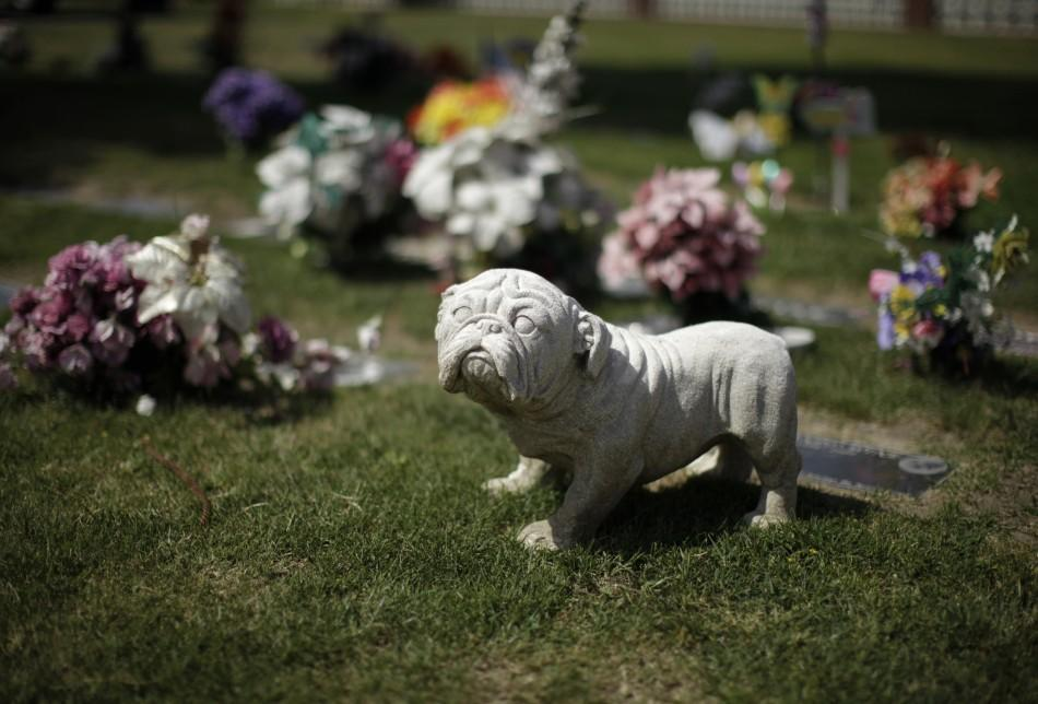 Memorial is seen at pet cemetery in Huntington Beach