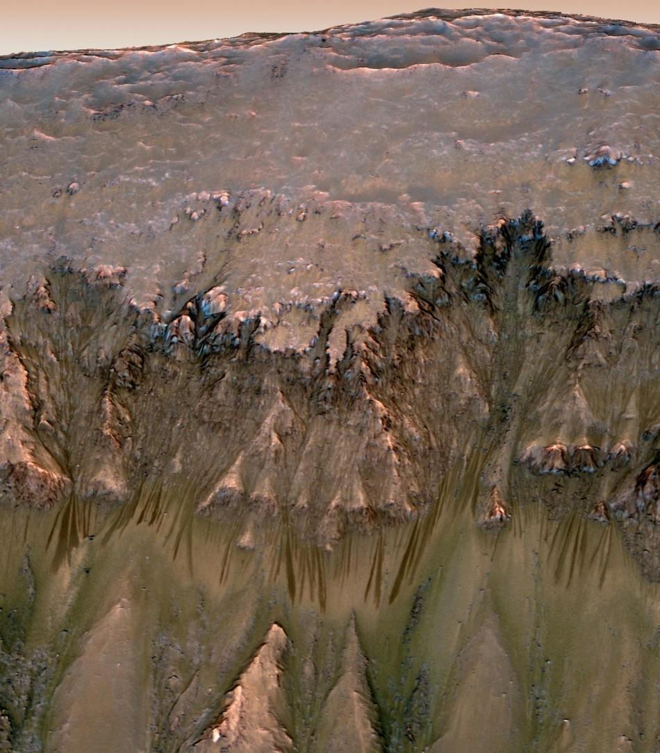 Water flows that appear in spring and summer on a slope inside Mars' Newton crater are shown in this combination of orbital imagery with 3-D modeling in this NASA handout photo