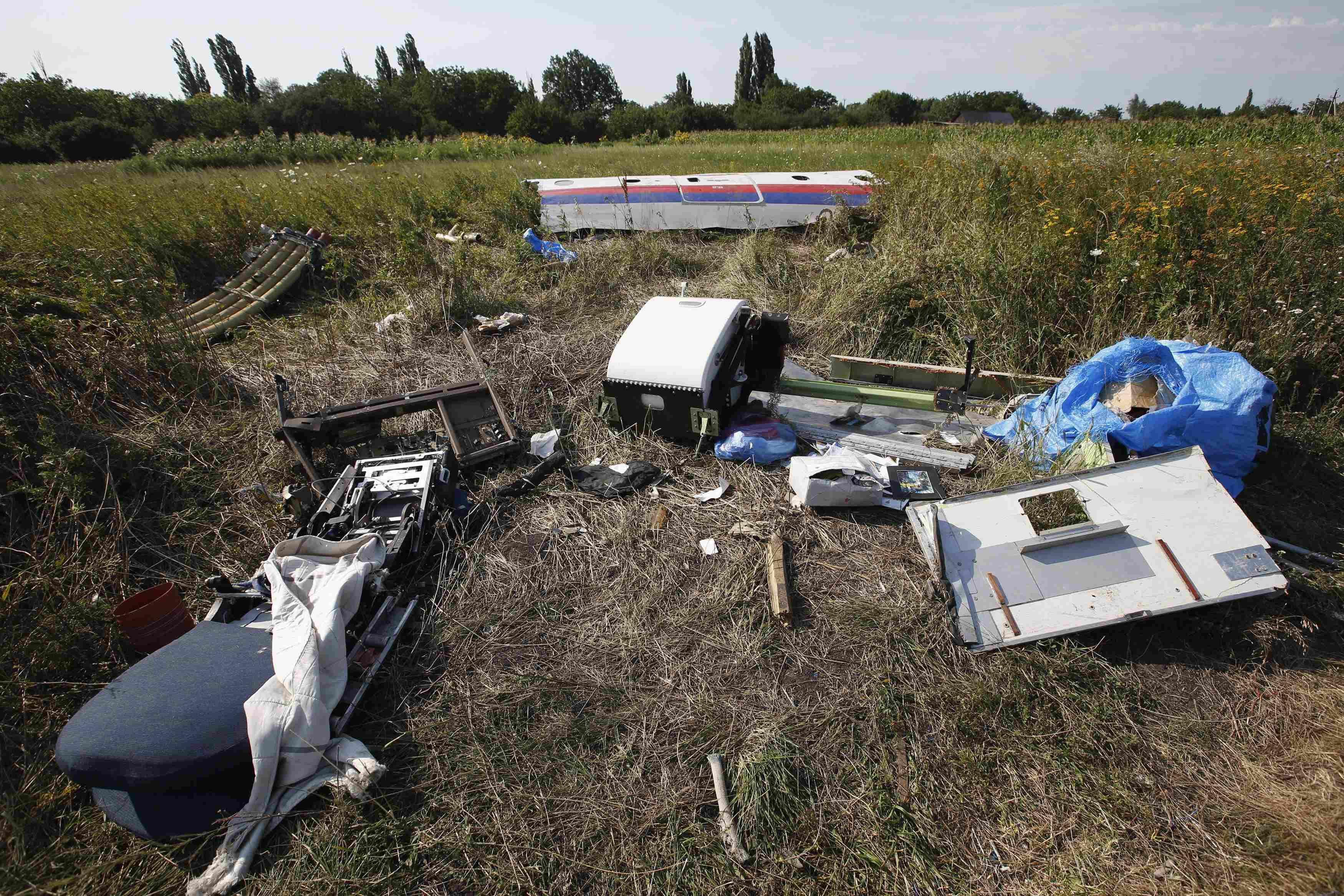 Malaysia Airlines Flight MH17 Crash Site