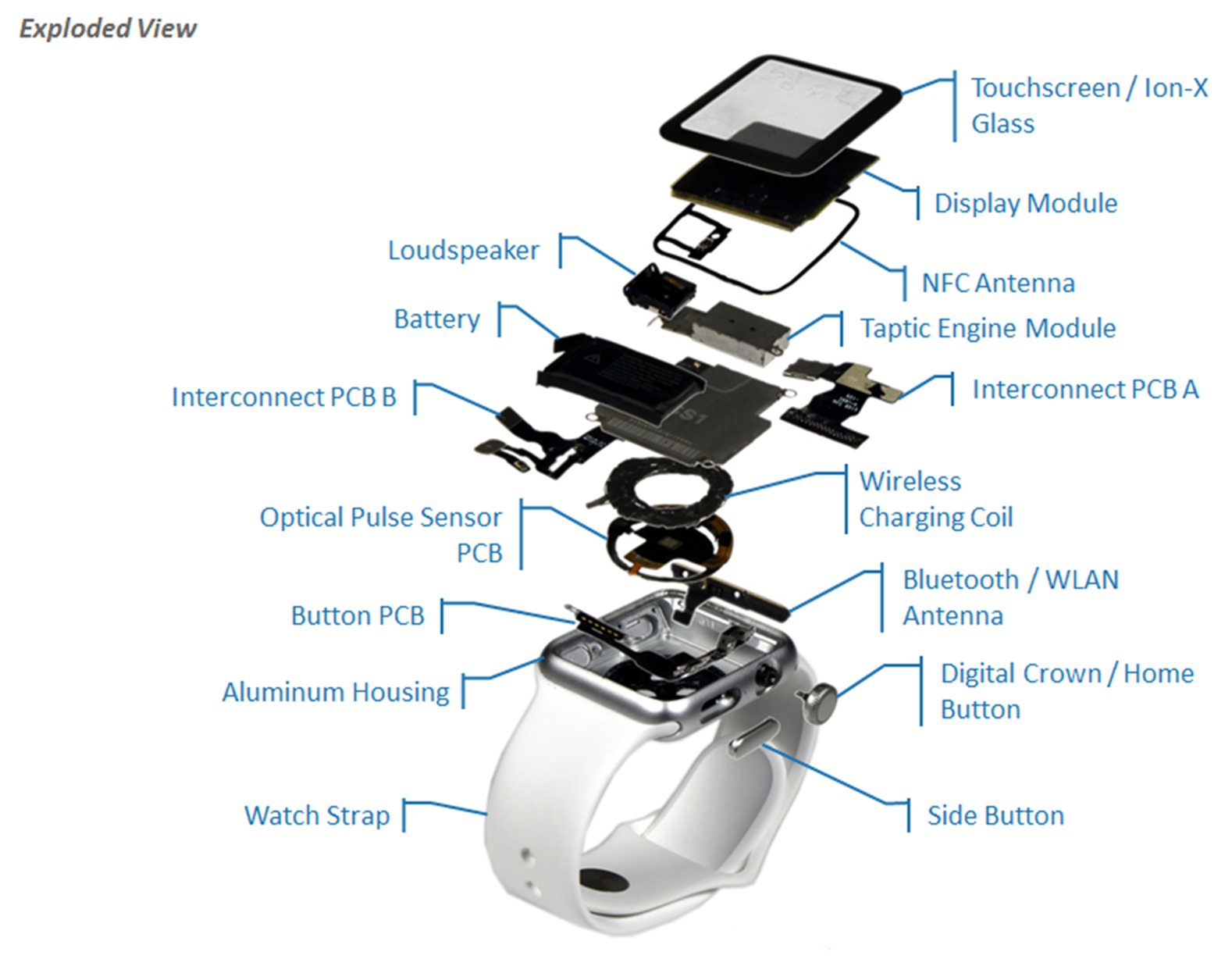 Apple Watch Exploded view