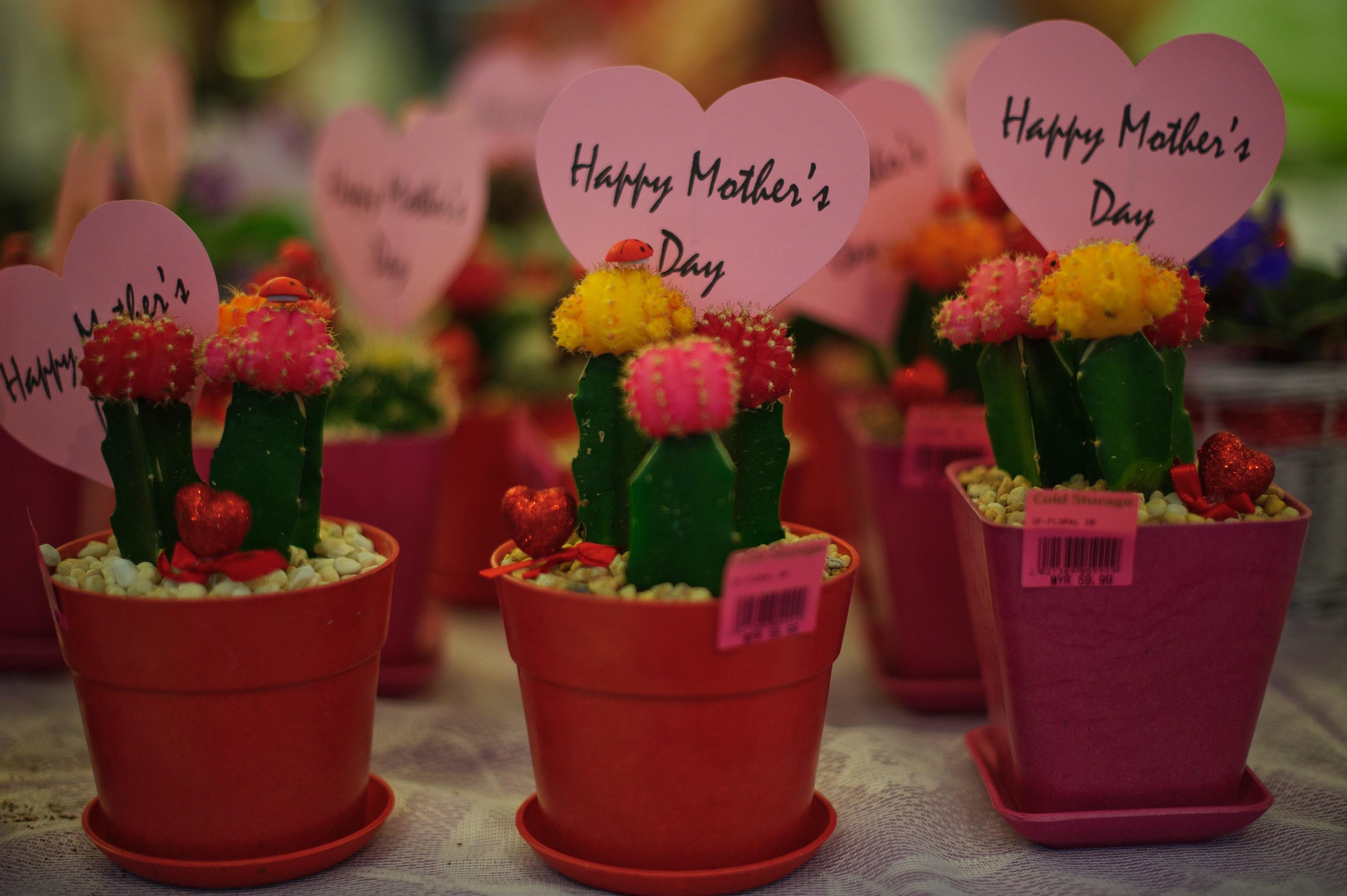 Mother's Day Playlist 2016