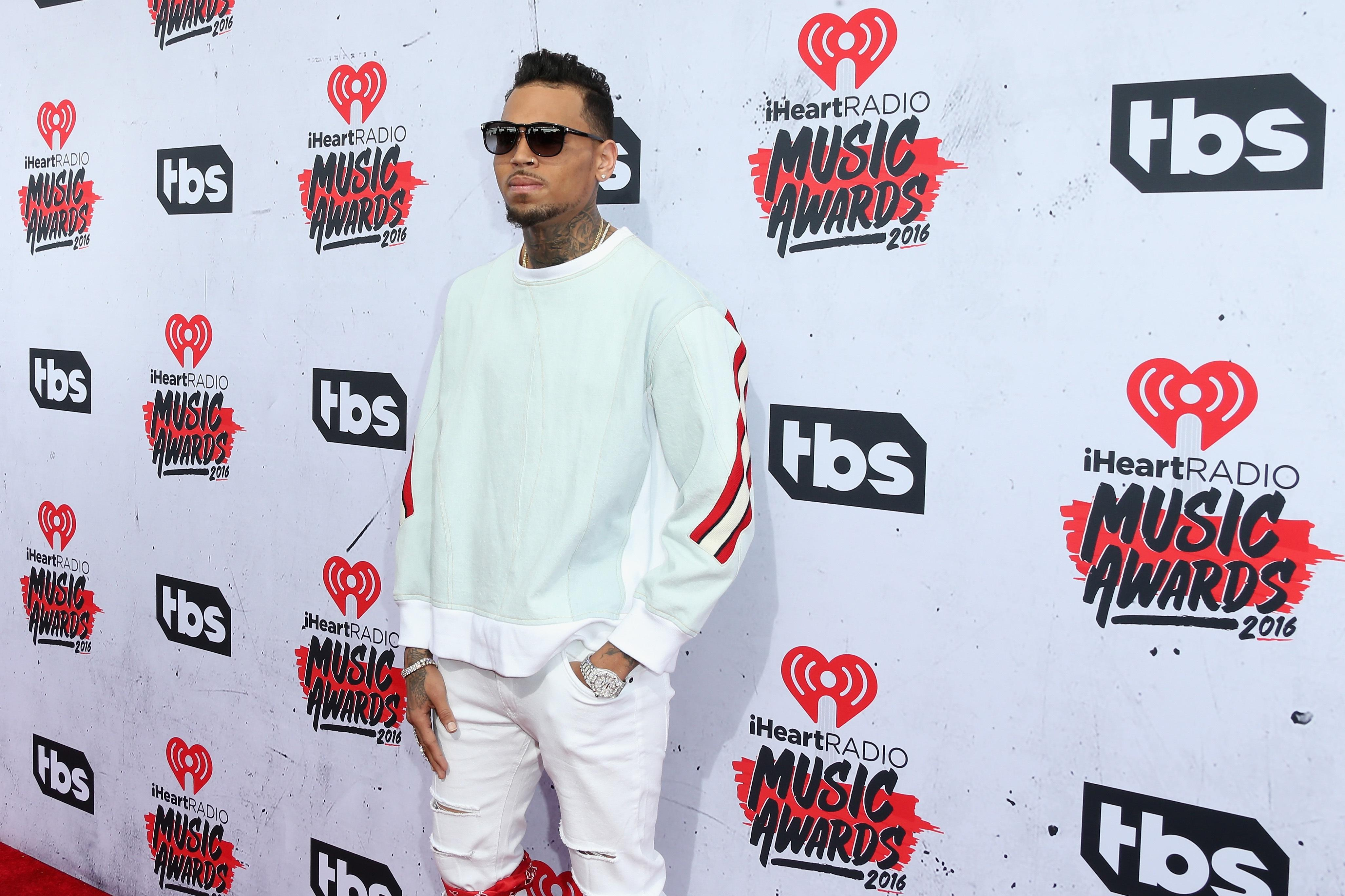 Chris Brown fight with fan