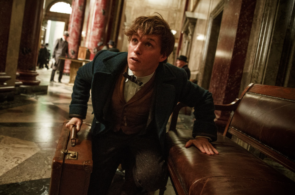 Fantastic Beasts And Where To Find Them' SEQUEL Is Coming SOONER Than ...