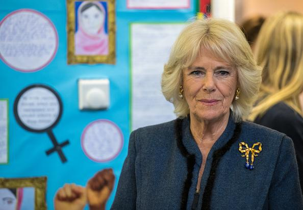 How Camilla Parker Bowles Becoming Queen Could Affect Sex
