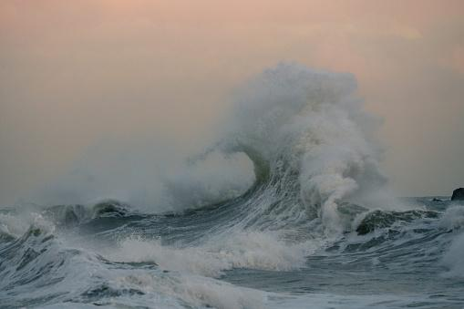 Nearly 80 Foot Tall Wave Largest Ever Recorded In