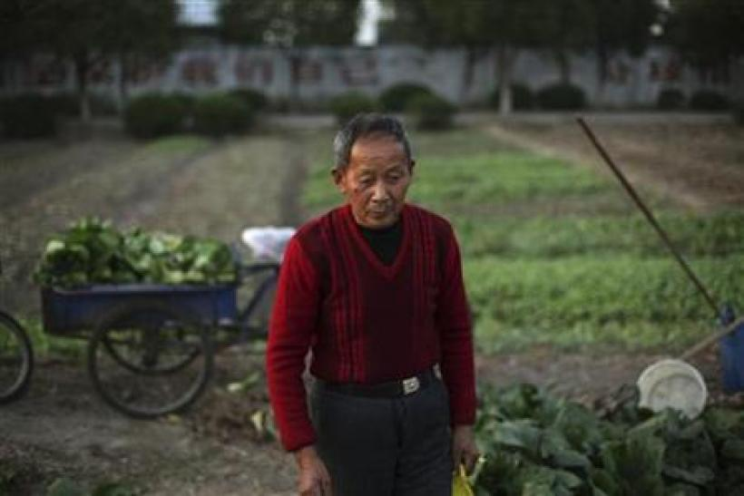 A man waits for his wife to hand over to him vegetables from their garden in the village of Zhaohang