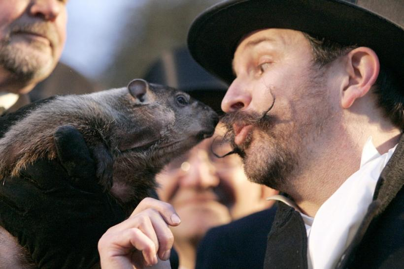 What was Punxsutawney Phil's prediction for Groundhog Day 2011? (PHOTOS).
