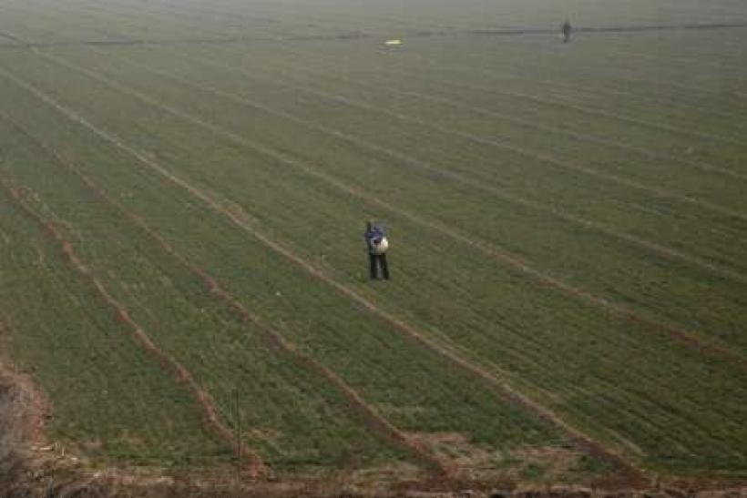 China drought likely to last, threatening winter wheat