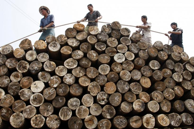 Labourers use a rope to pile logs at a timber market in China
