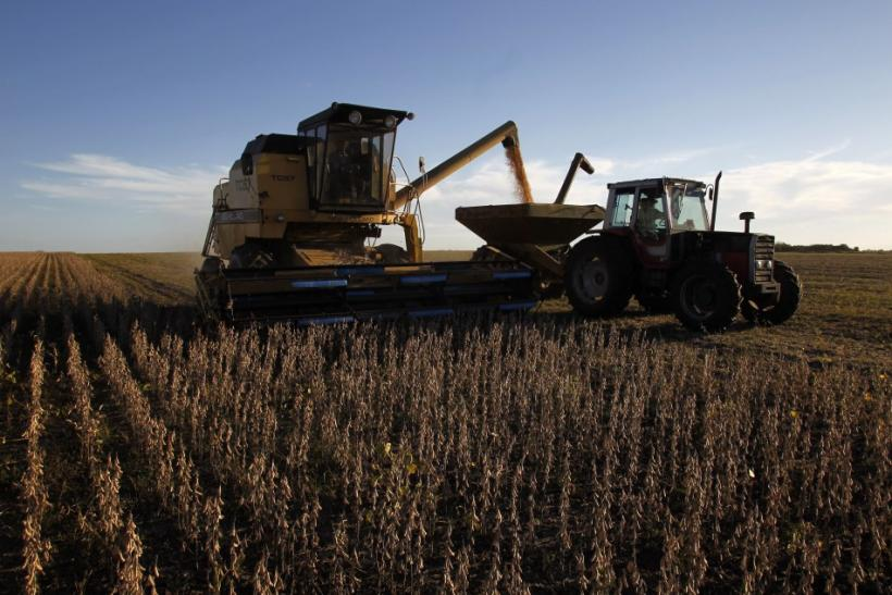 Soybeans are harvested on a farm on the outskirts of San Jose