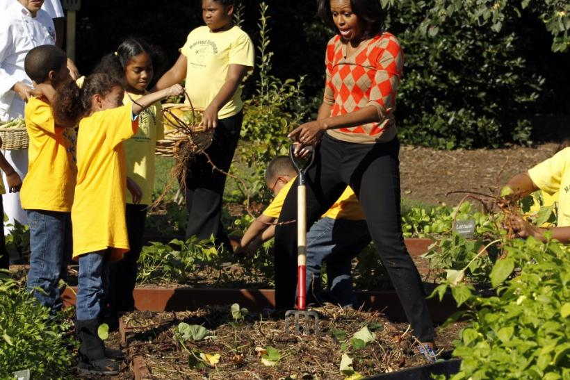 U.S. first lady Michelle Obama (L) digs for sweet potatoes as a local school student brings some to a wheelbarrow as they conduct the fall harvest in the White House Kitchen Garden in Washington