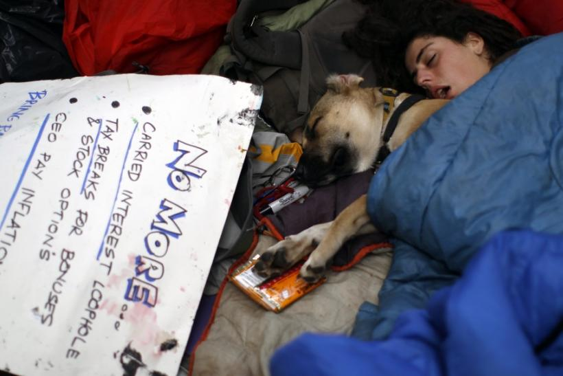 An Occupy Wall Street protester and her dog sleep at Zuccotti Park in lower Manhattan in New York