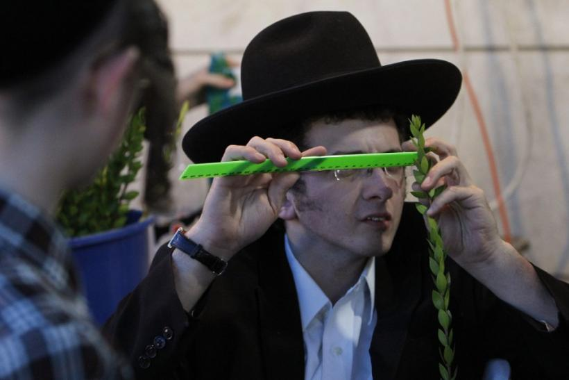 An ultra-Orthodox Jewish man checks a myrtle branch for blemishes at a market in Jerusalem's Mea Shearim neighbourhood