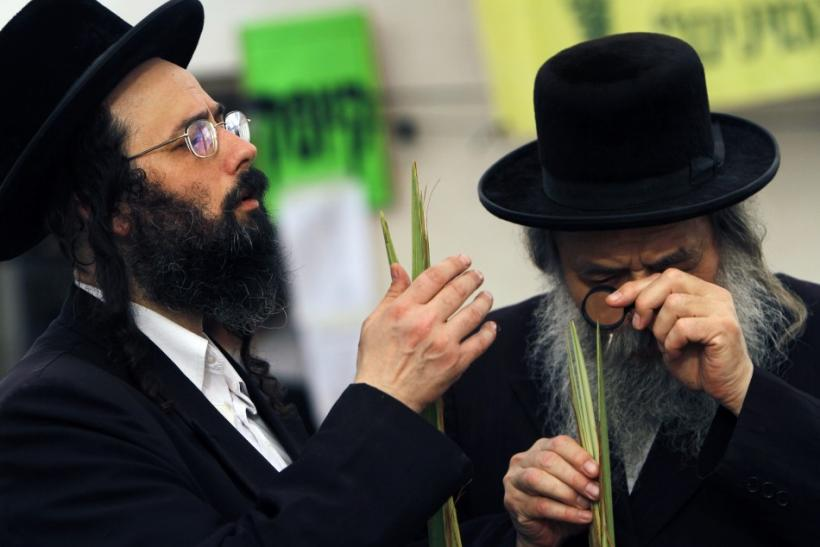 Ultra-Orthodox Jews inspect palm fronds for blemishes at a market in Bnei Brak near Tel Aviv