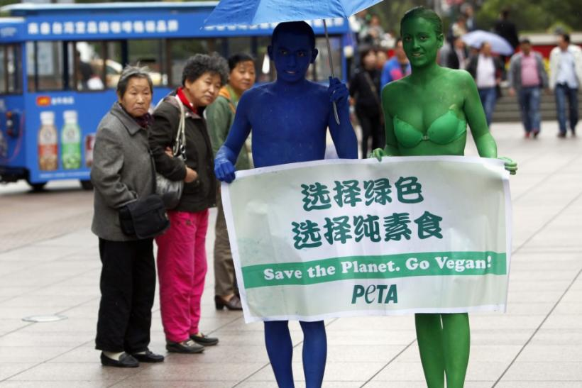 Animal Rights Protests in 2011