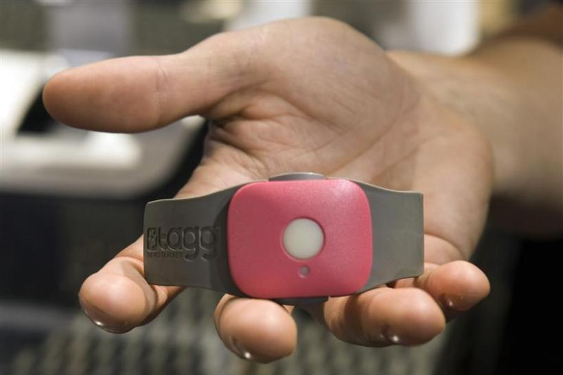 A Tagg - The Pet Tracker GPS pet collar is displayed at the Qualcomm booth during the 2012 International Consumer Electronics Show (CES) in Las Vegas