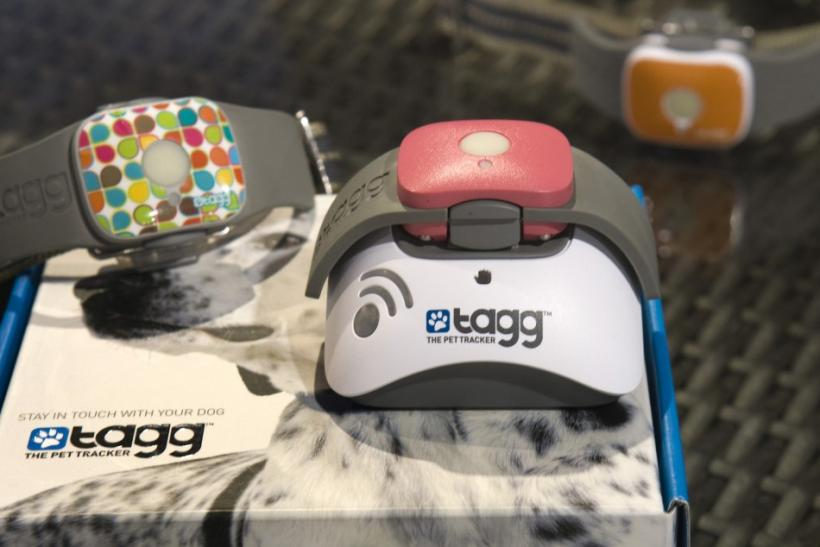 Tagg - The Pet Tracker GPS pet collars are displayed at the Qualcomm booth during the 2012 International Consumer Electronics Show (CES) in Las Vegas, Nevada, January 12, 2012. The collar uses GPS to track a pet's location and can send messages over