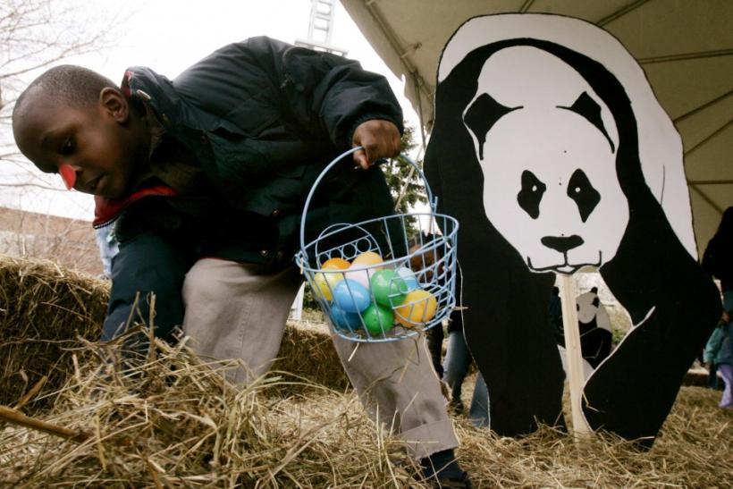 Jalen Ayers, 6, digs through a pile of hay as he takes part in an Easter egg hunt at the National Zoo in Washington, April 9, 2007.
