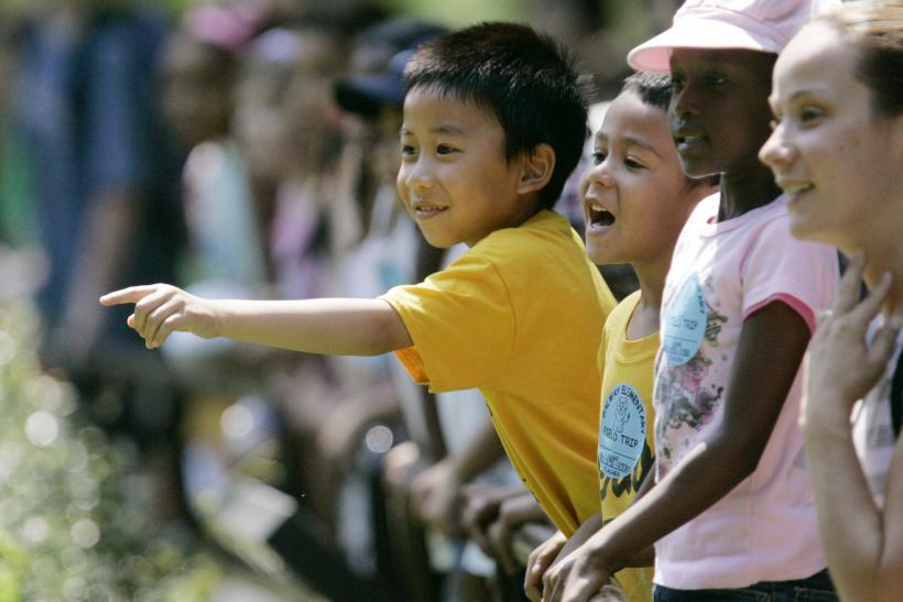 minority united states and minorities Washington (ap) — for the first time, america's racial and ethnic minorities  now make up about half of the under-5 age group, the.
