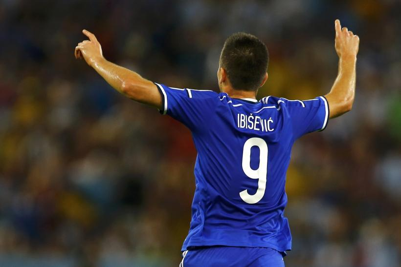 Vedad Ibisevic Bosnia World Cup 2014