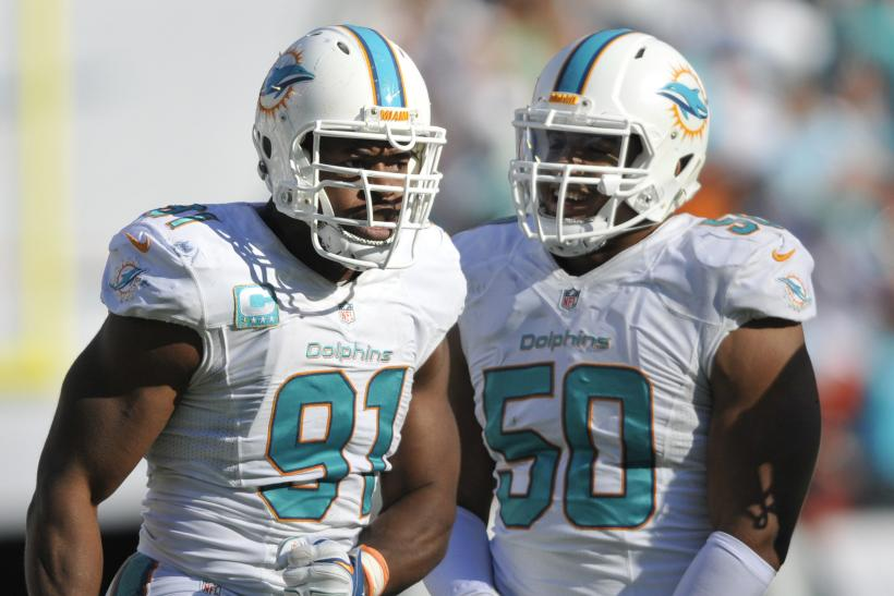 Dolphins DST 2014