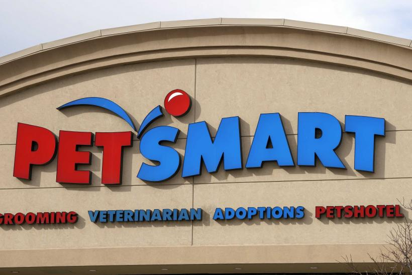 Petsmart Petm Stock Price Jumps After Bc Partners Says It Will Buy