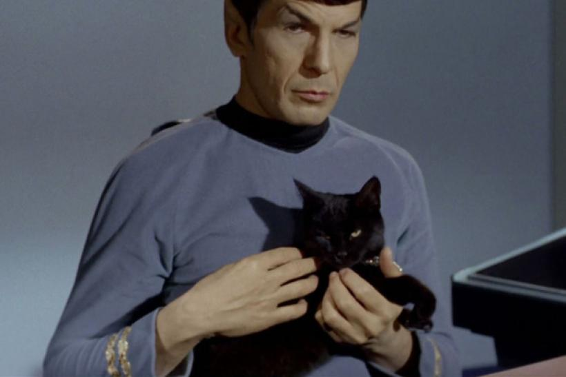 star-trek-spock-5