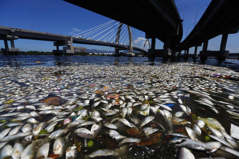 Rio Olympics 2016: Rio Mayor Says Polluted Guanabara Bay Unlikely To Be Cleaned In Time
