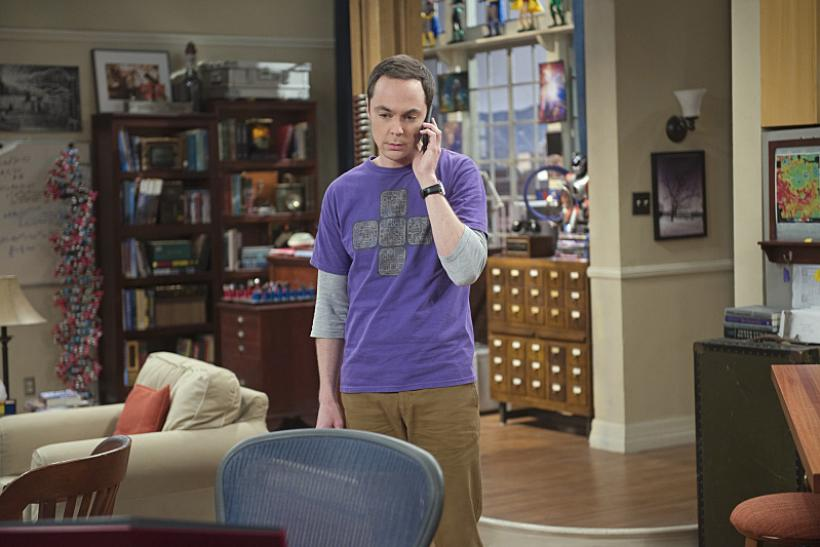 'The Big Bang Theory' Season 9 Spoilers: Episode 8 ...