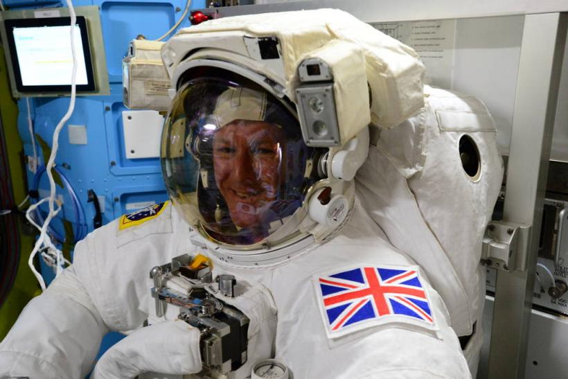 first esa astronaut in space - photo #11