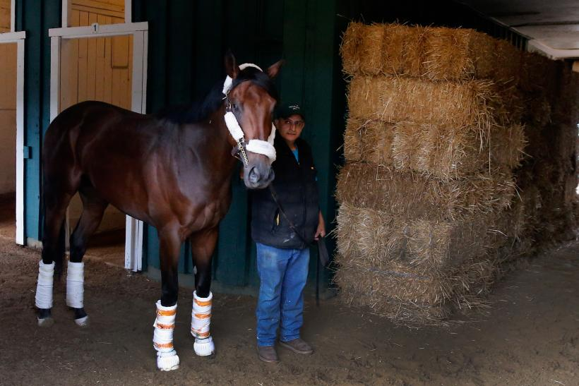 2016 Preakness Stakes Date, Time, Contenders, Odds And Ticket ...