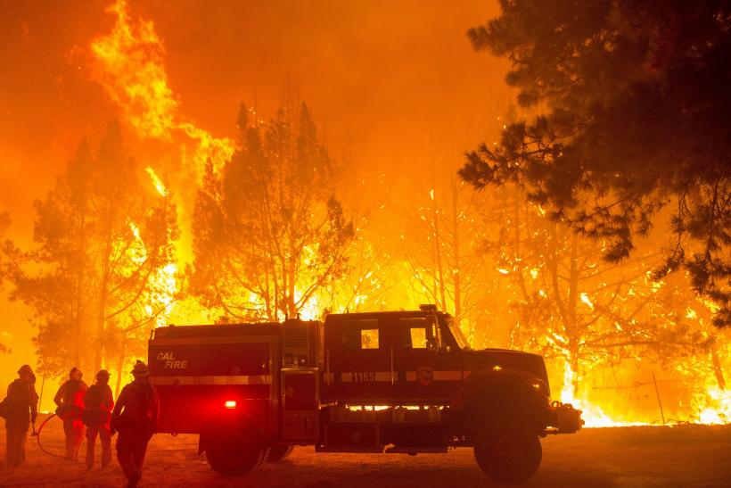 climate change and forest fires