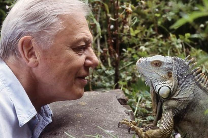 david attenborough story of life app