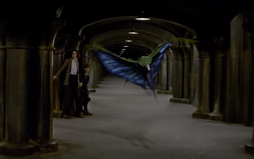 Fantastic Beasts Swooping Evil