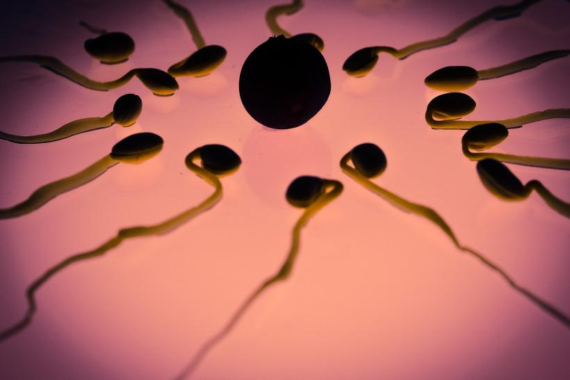 Trials to be conducted for contraceptive gel that can reduce sperm count
