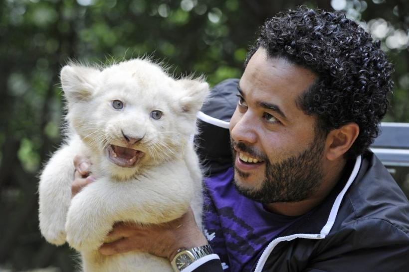 """Adel Tawil, a singer with the German band """"Ich&Ich"""", poses with a six-week-old white lion cub named """"Adel"""" after a christening ceremony for three white ... - 128907-tawil-and-adele"""